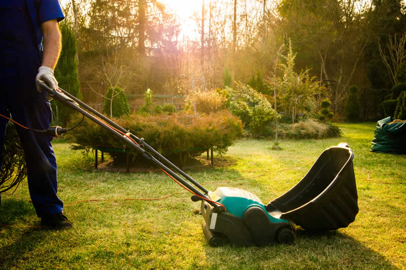Lawn Care Costs from Greengrass lawncare